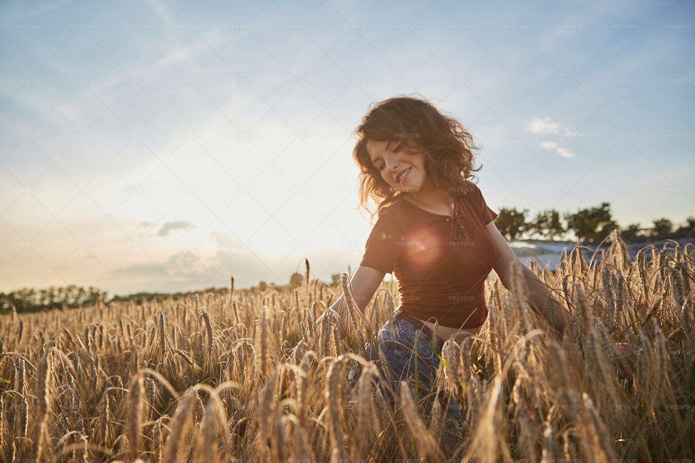 In The Wheat Field: Stock Photos