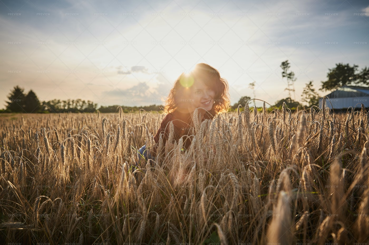 In The Field At Sunrise: Stock Photos