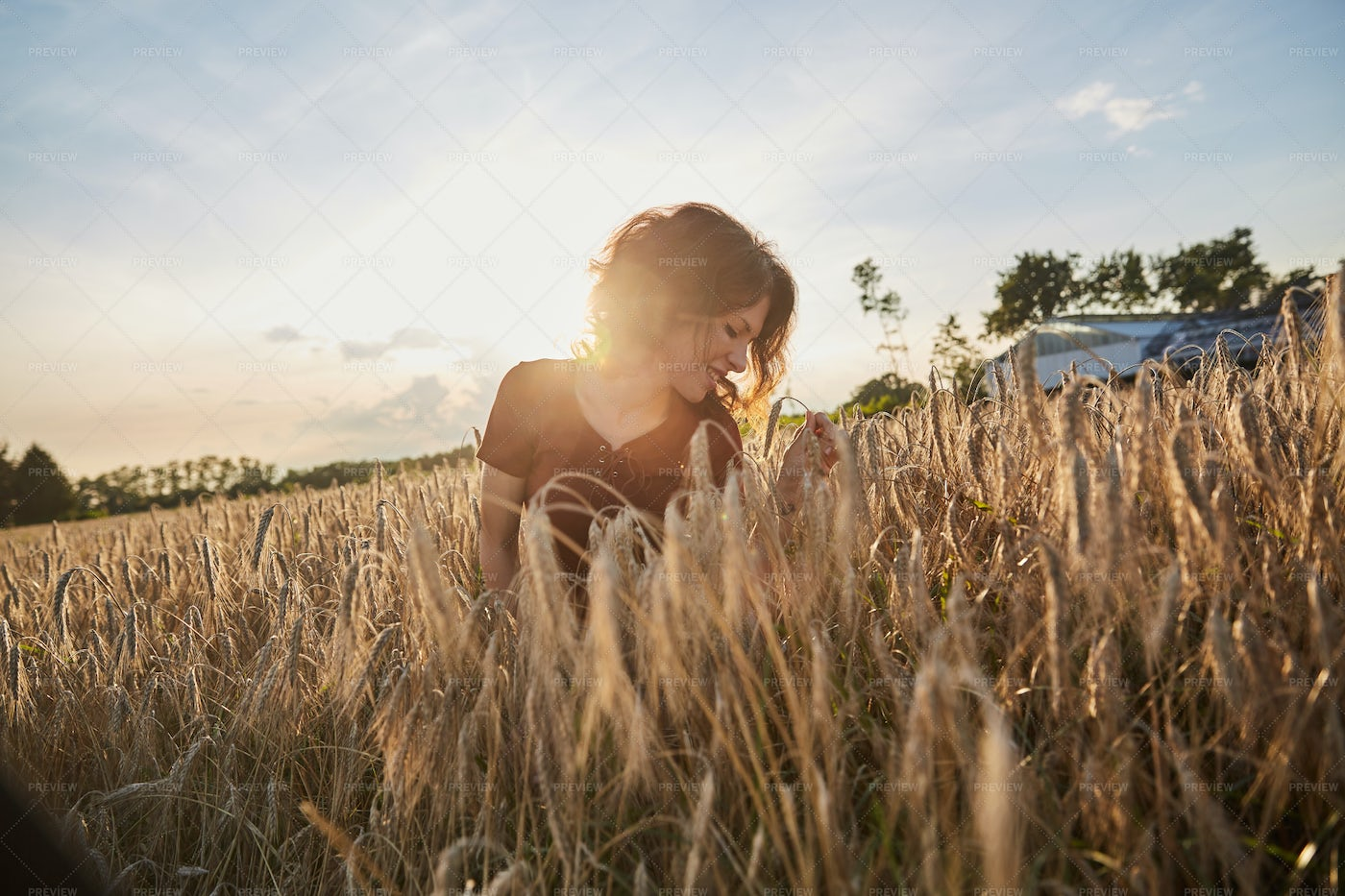 Woman In Field Of Wheat: Stock Photos
