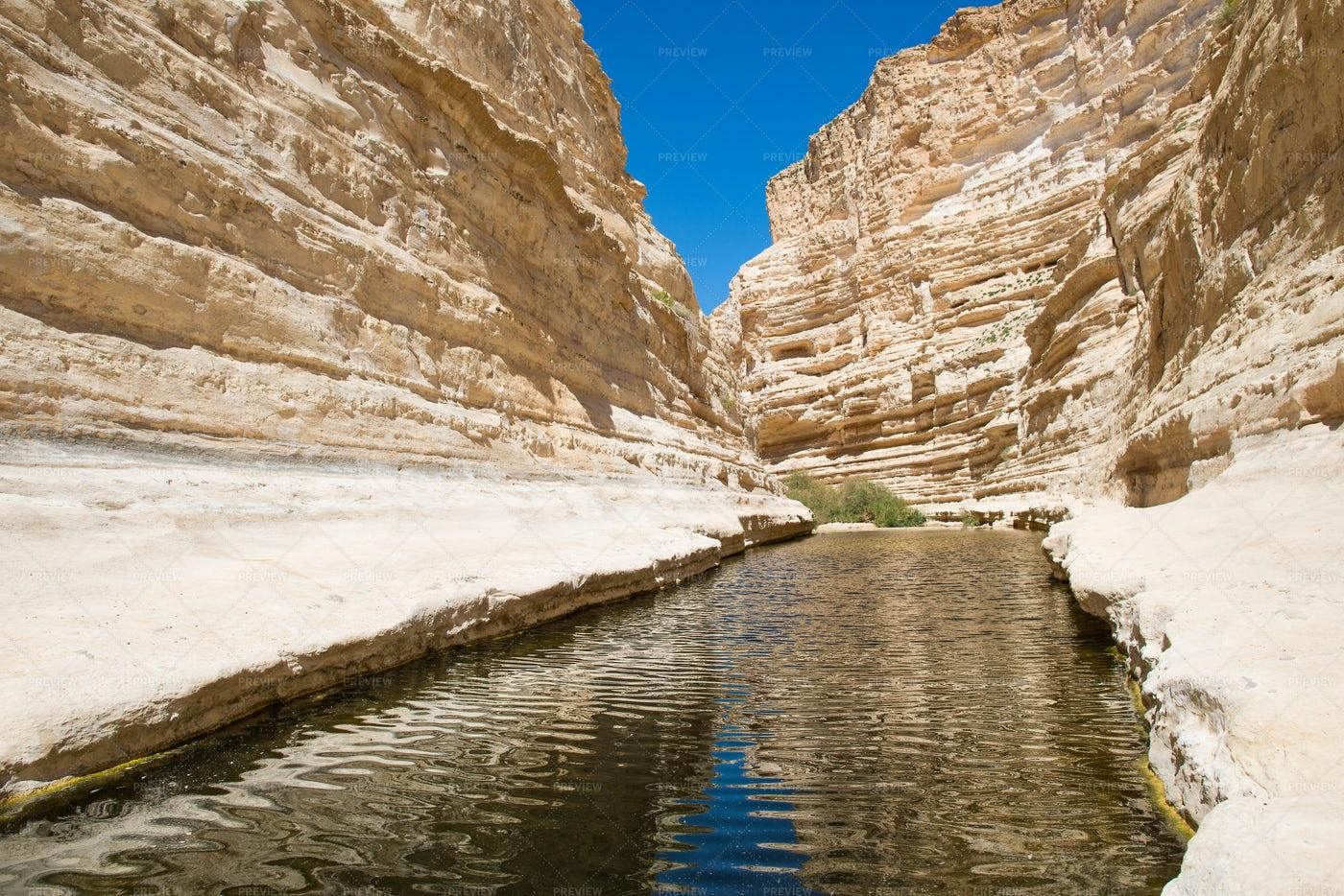 Canyon Ein-Avdat: Stock Photos