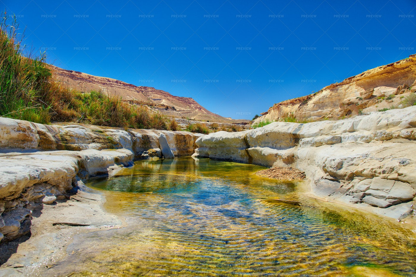 Water Oasis In The Desert: Stock Photos
