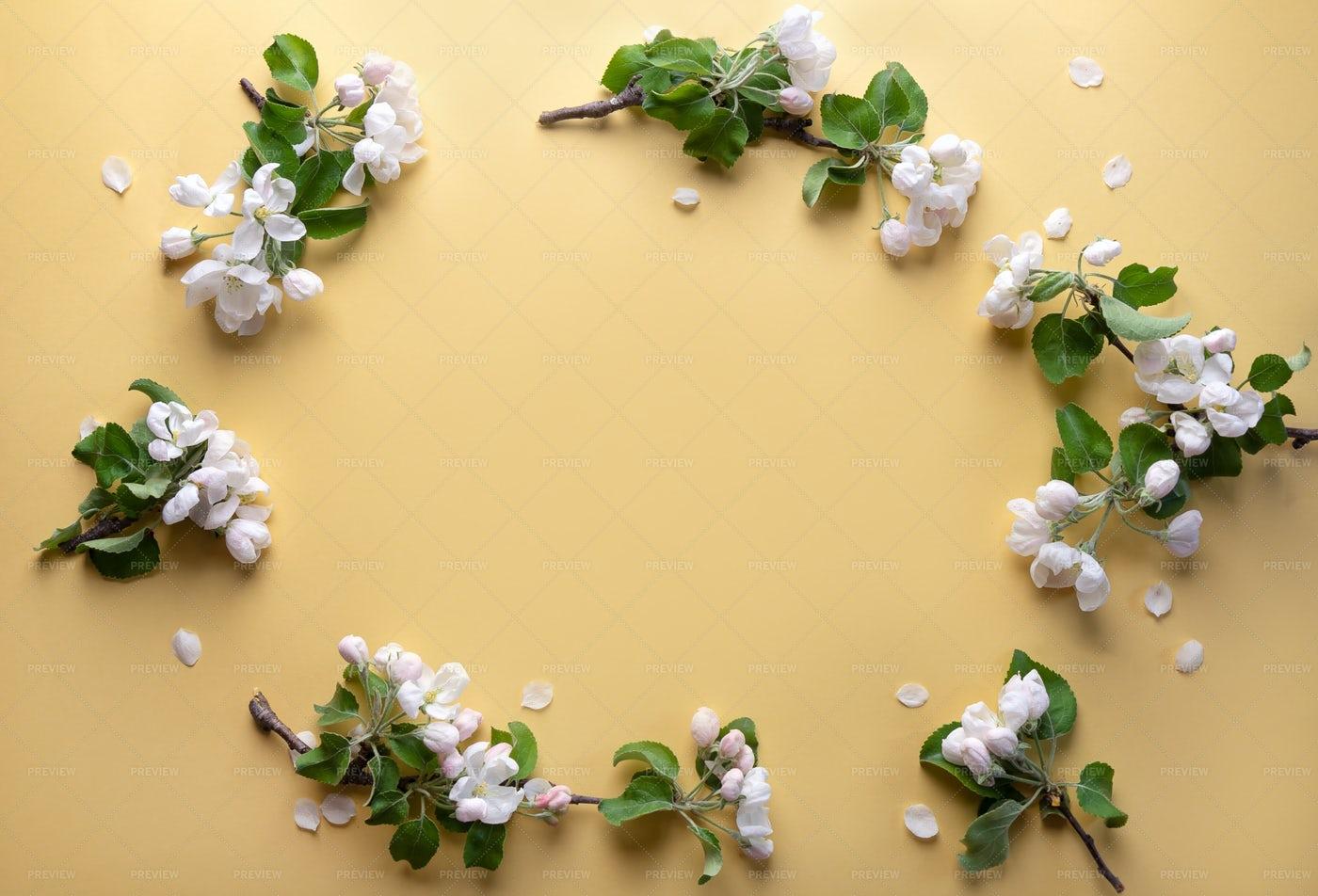 Frame Of Flowers: Stock Photos