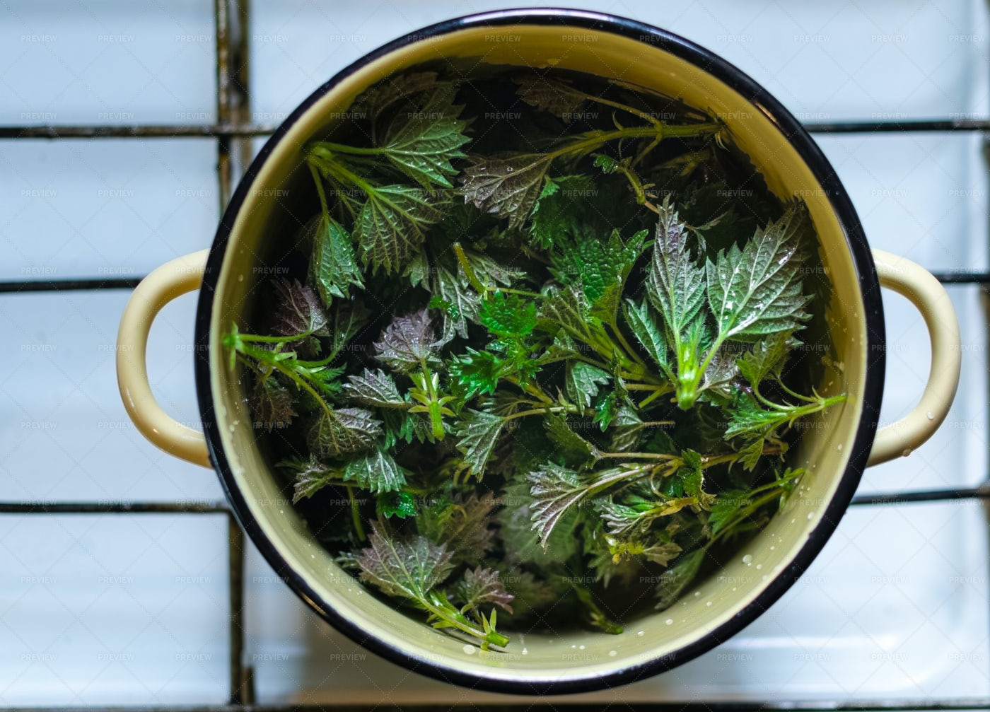 Saucepan Of Nettle Leaves: Stock Photos