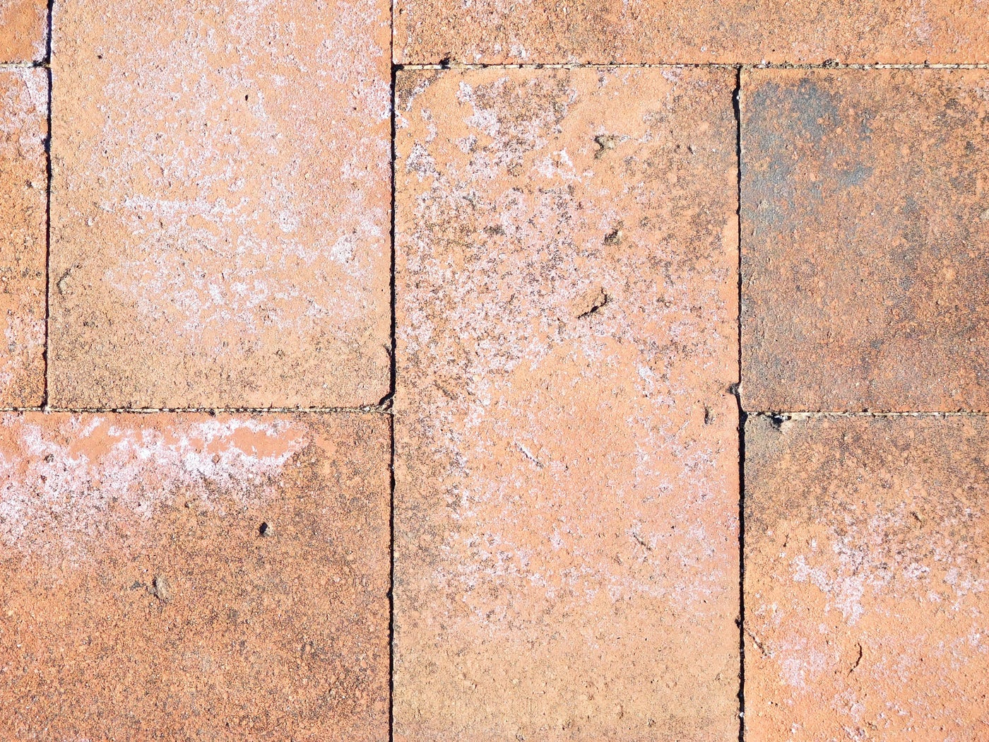 Brick Flooring: Stock Photos