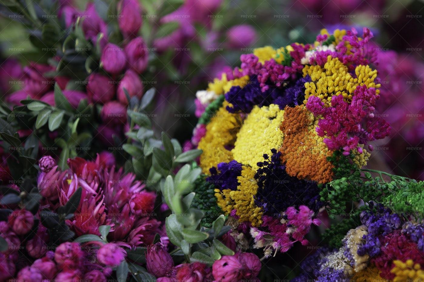 Beautiful Bright Flowers: Stock Photos