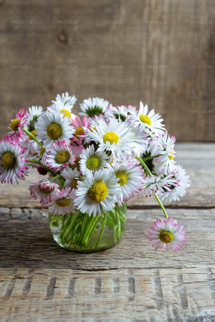 Bouquet Of Daisies: Stock Photos