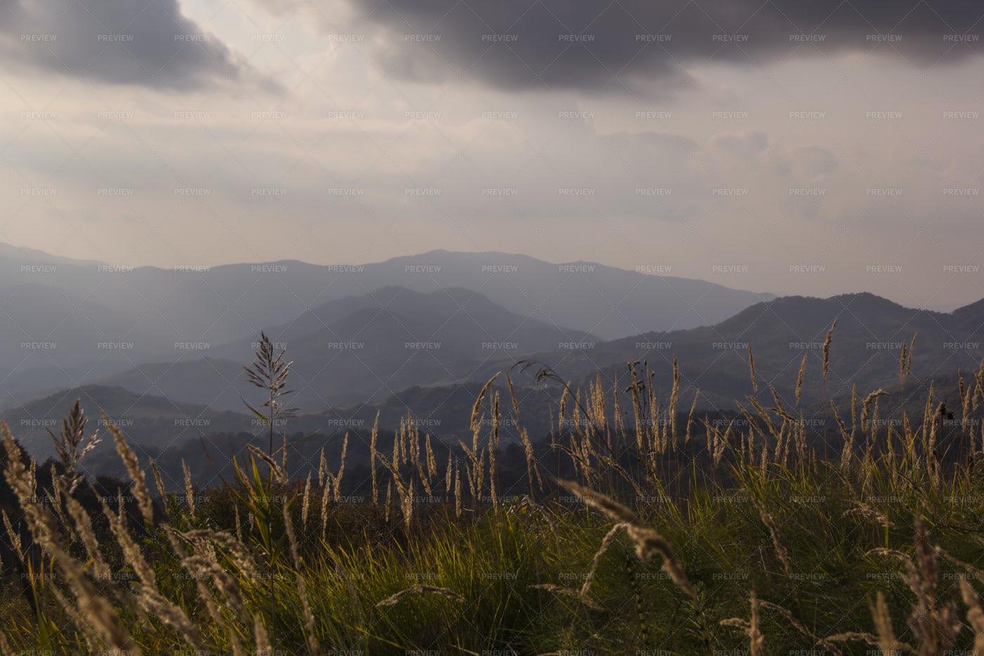 Kakheti Landscape: Stock Photos