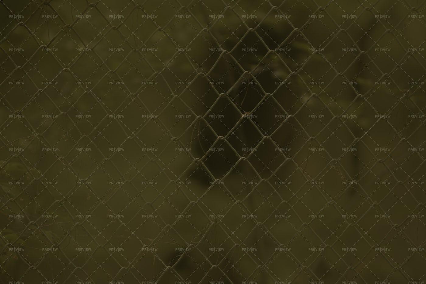 Metal Fence: Stock Photos