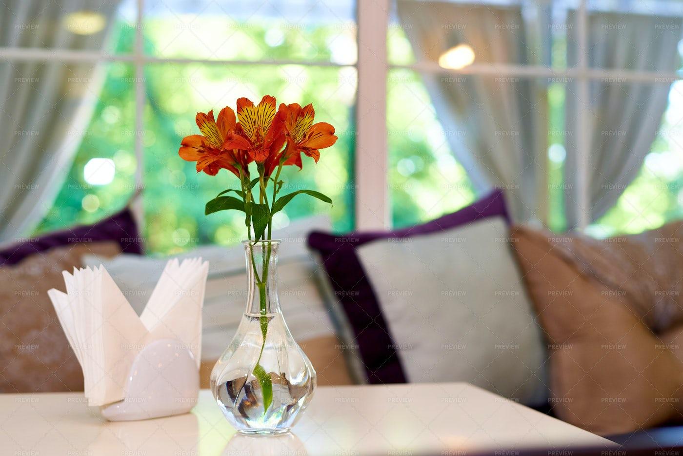Vase Of Flowers: Stock Photos