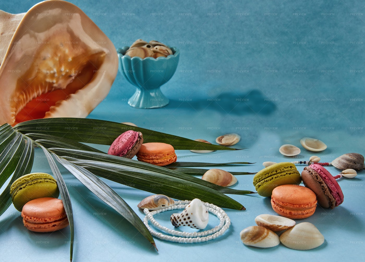 Beach Snacks, Shells And Plants: Stock Photos