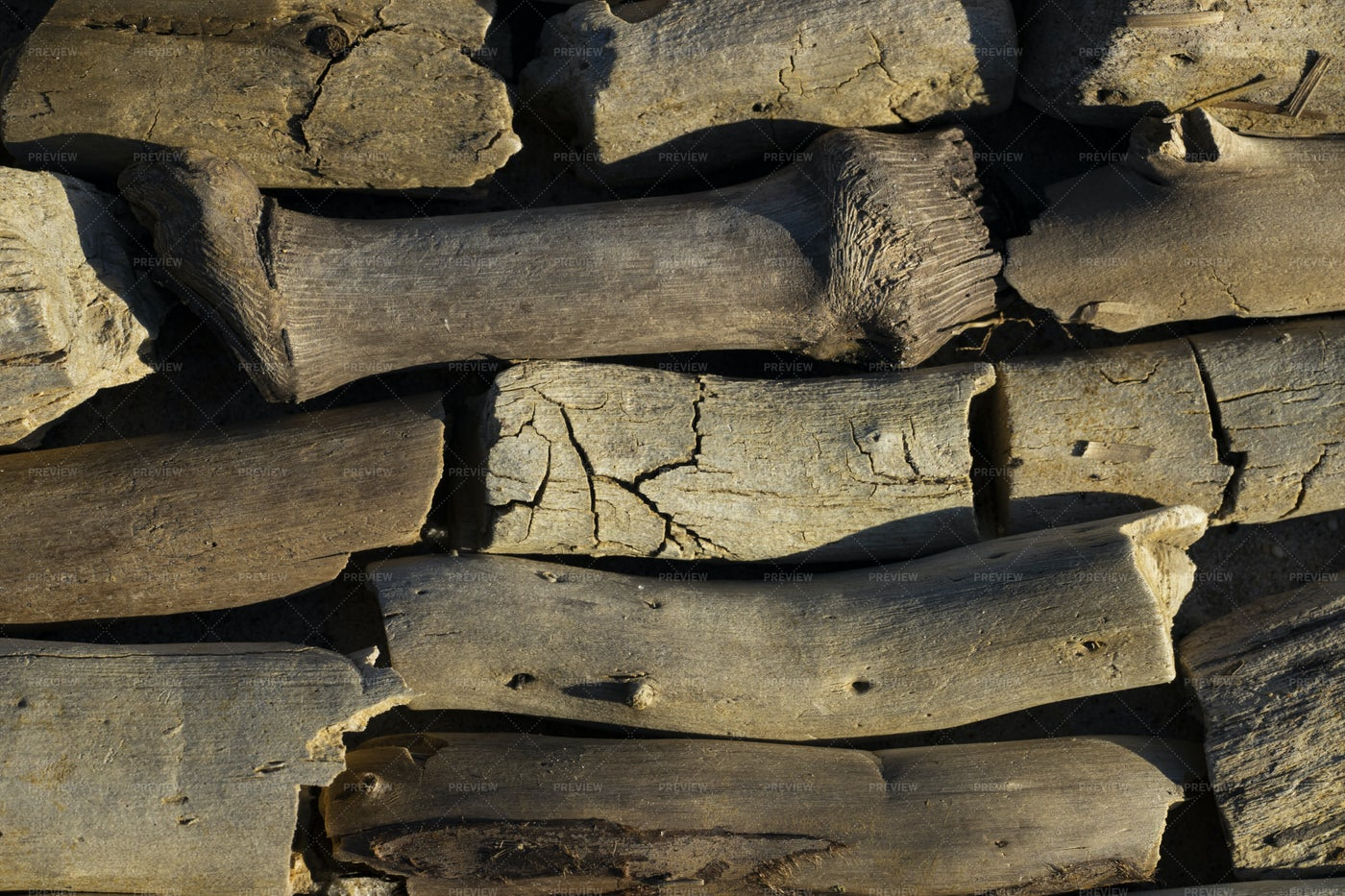 Pile Of Driftwood: Stock Photos