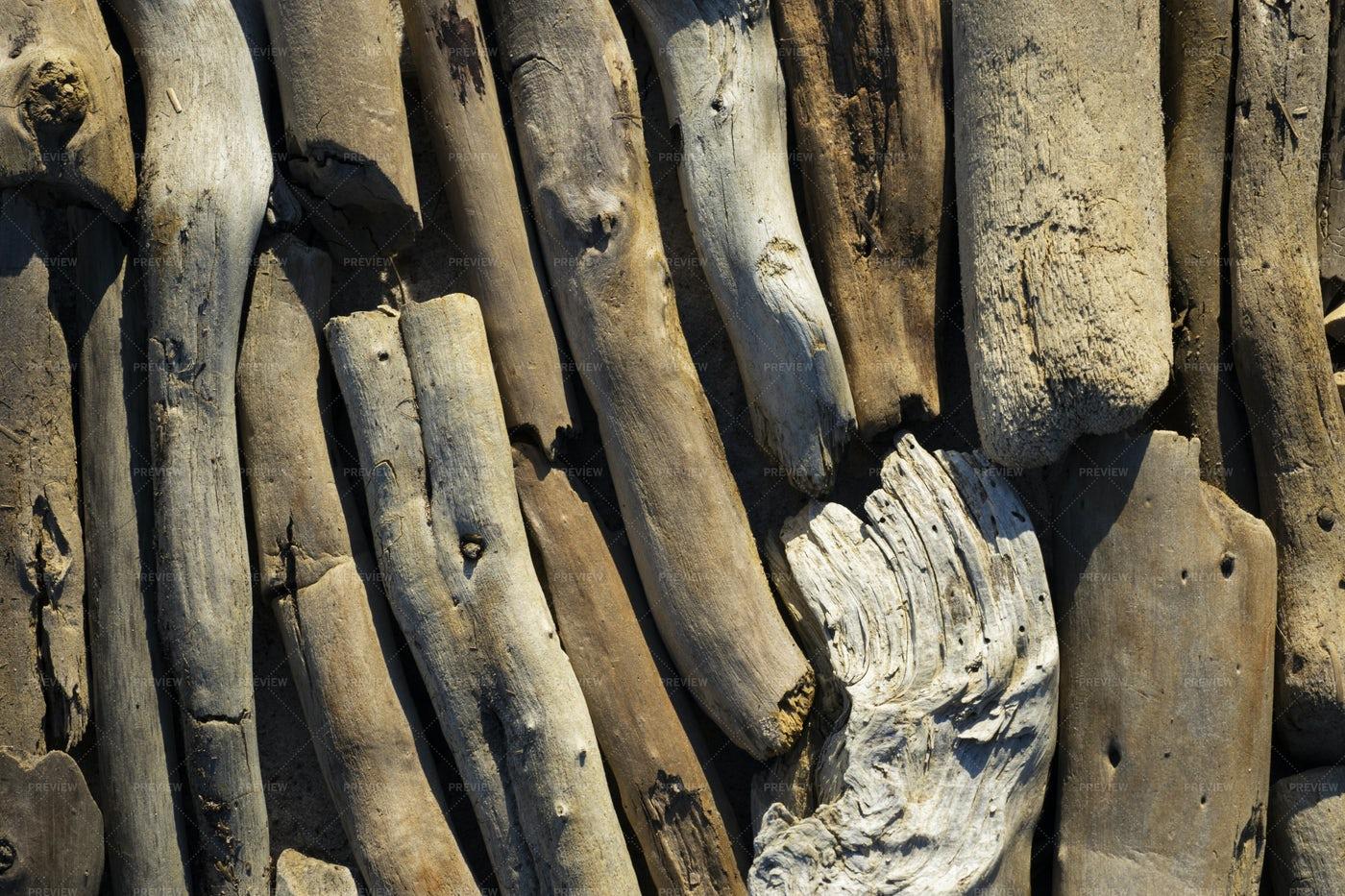 Driftwood Logs: Stock Photos