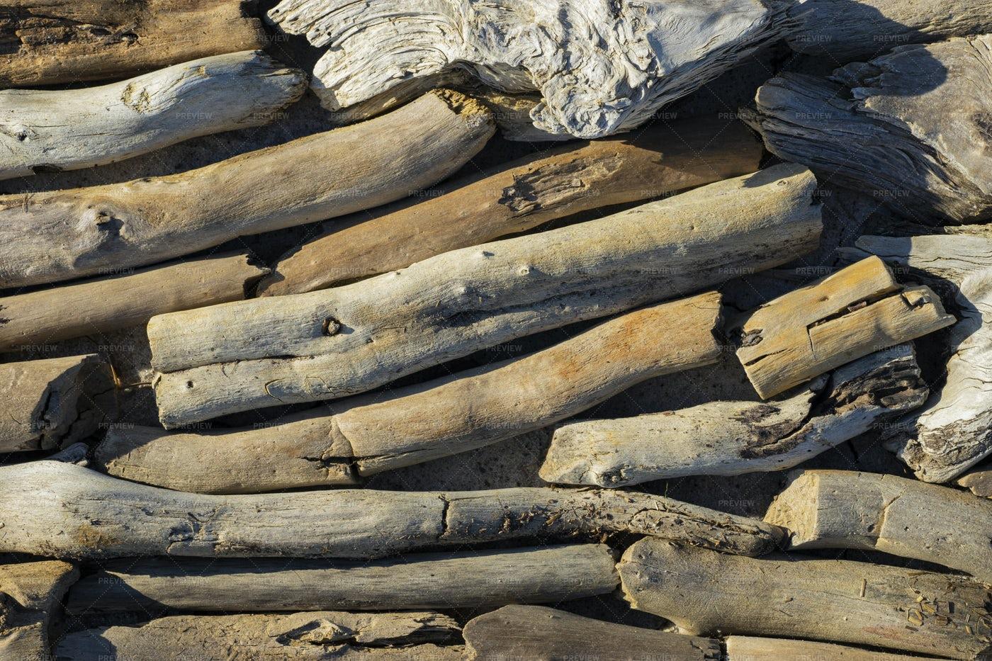 Driftwood Close-Up: Stock Photos