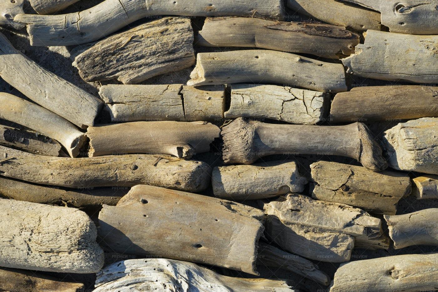 Driftwood Pile: Stock Photos