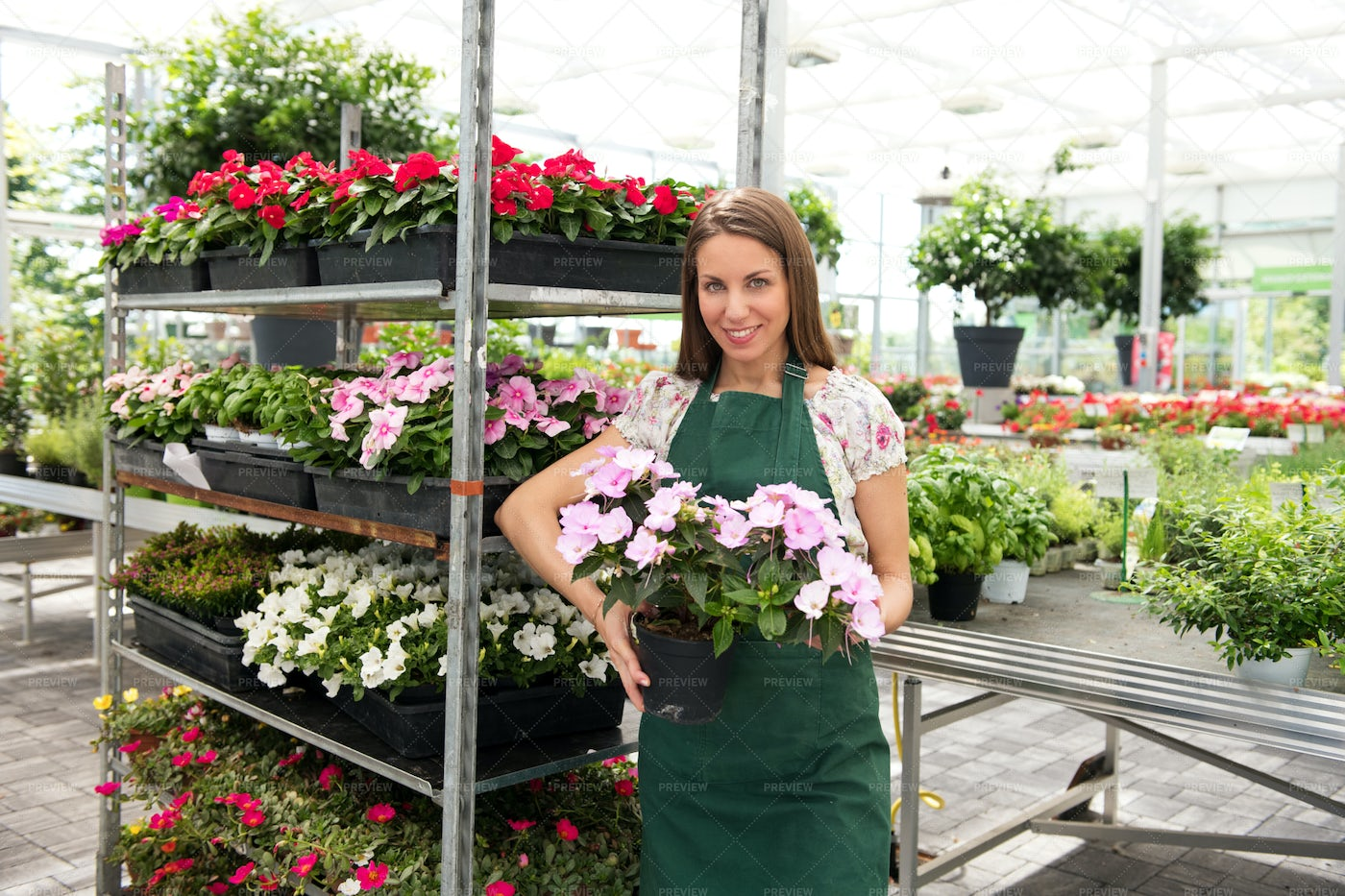 Woman Holding Potted Plants: Stock Photos