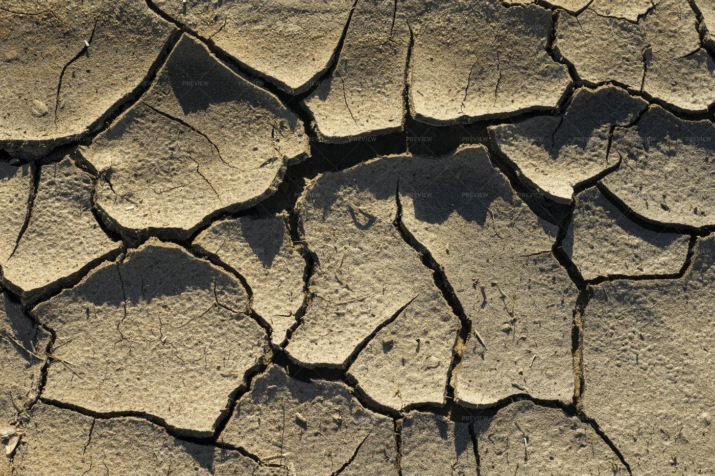 Cracking Dry Soil: Stock Photos