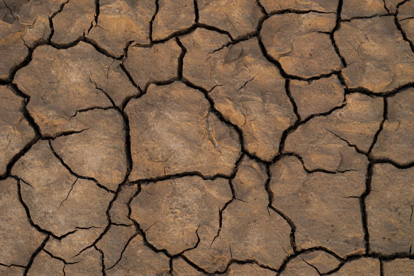 Cracked Textured Soil: Stock Photos