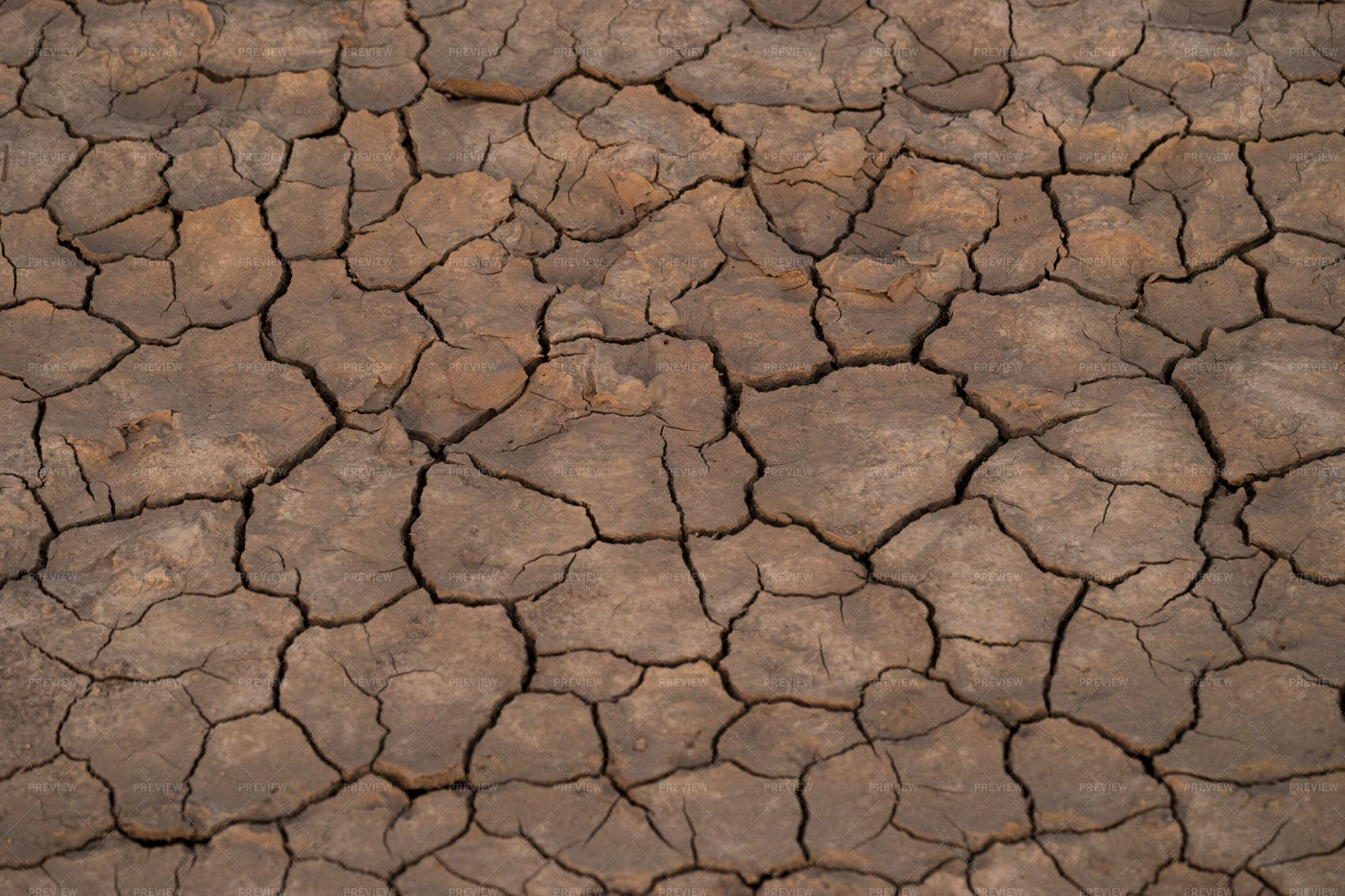 Dry Soil: Stock Photos