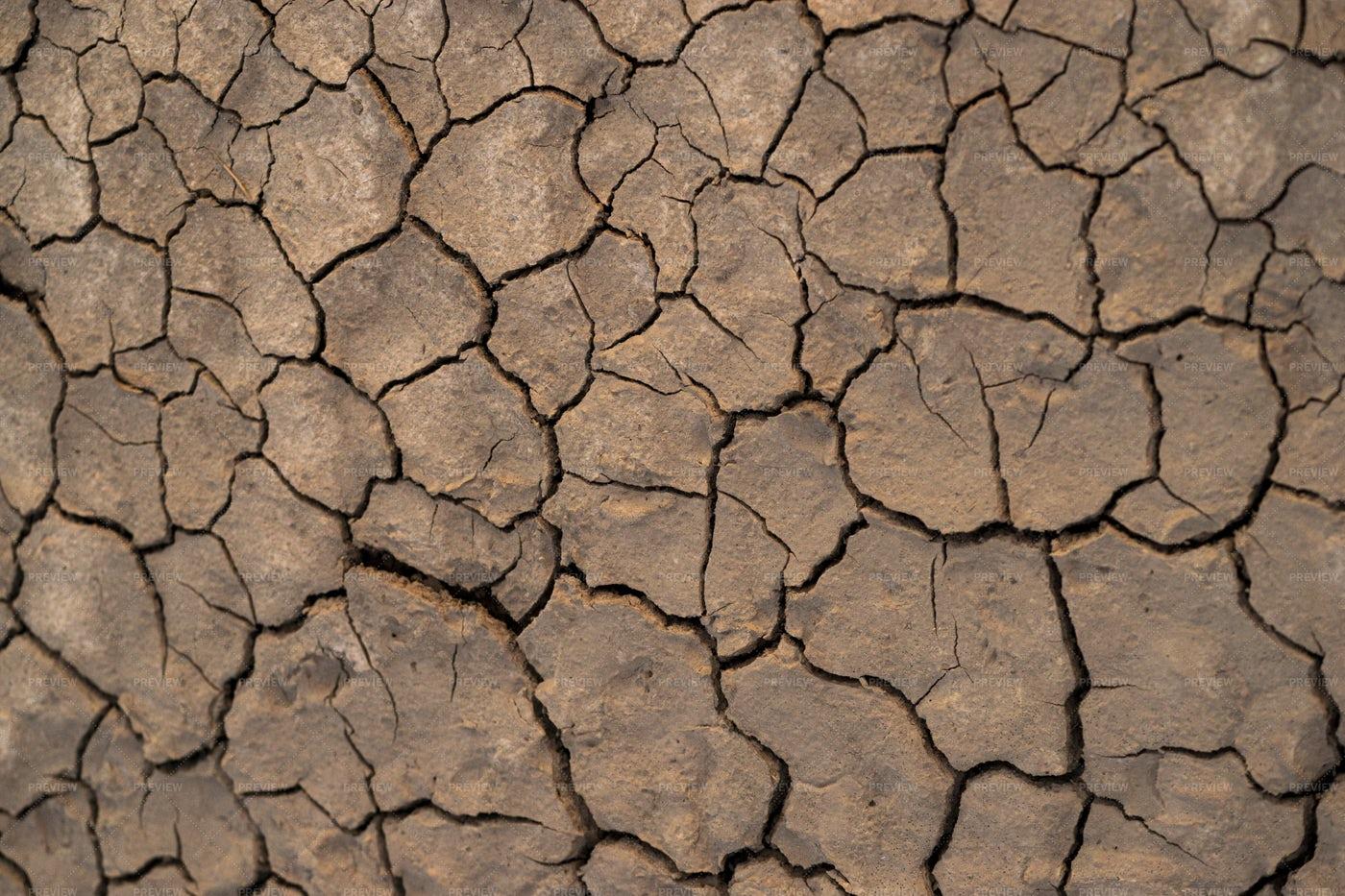 Cracked Soil: Stock Photos