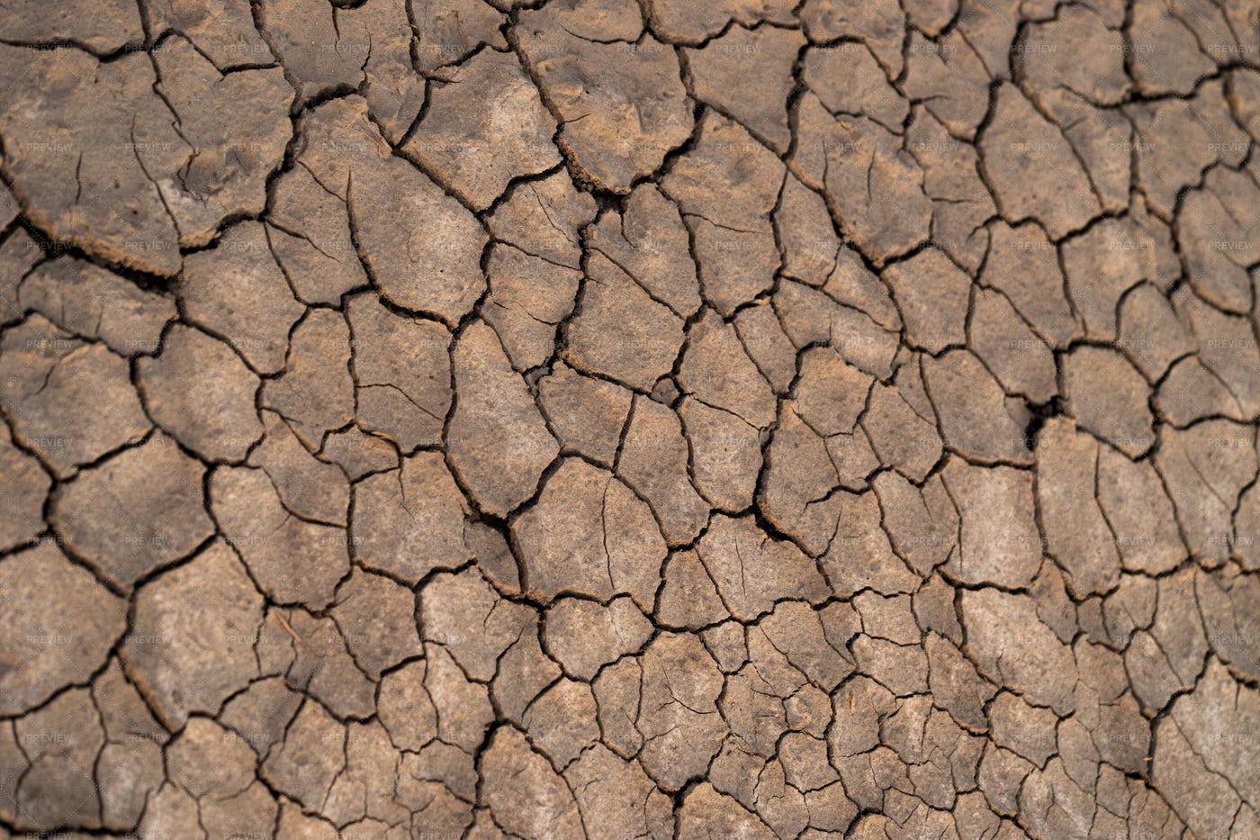 Many Cracks In The Soil: Stock Photos