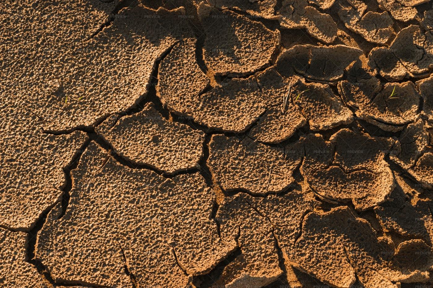 Soil Under The Heat: Stock Photos