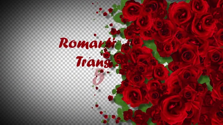 5 Romantic Roses Transitions: Motion Graphics