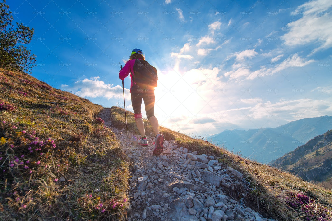 Hiking Up The Nordic Mountain: Stock Photos