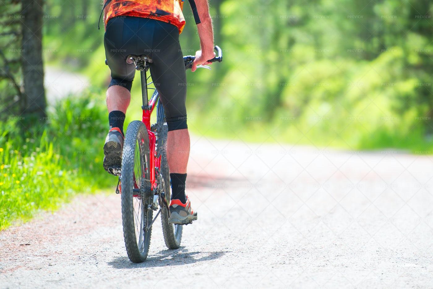 Mountain Bike Rider: Stock Photos