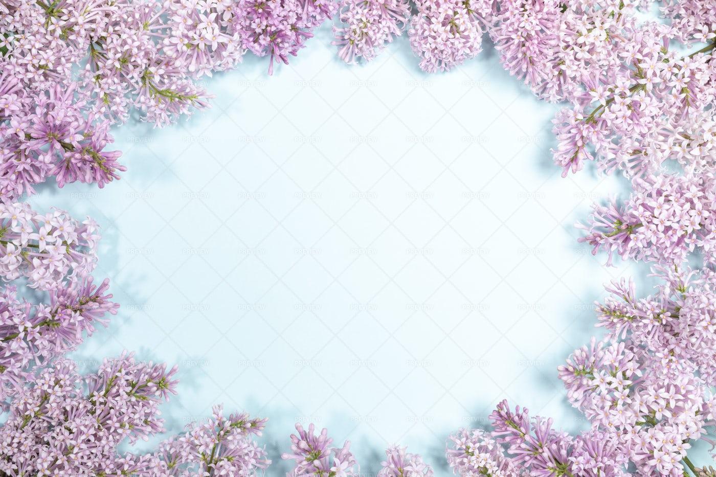 Lilac Flowers As Frame: Stock Photos