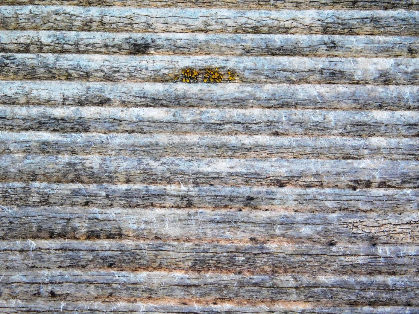 Bumpy Wood Texture: Stock Photos
