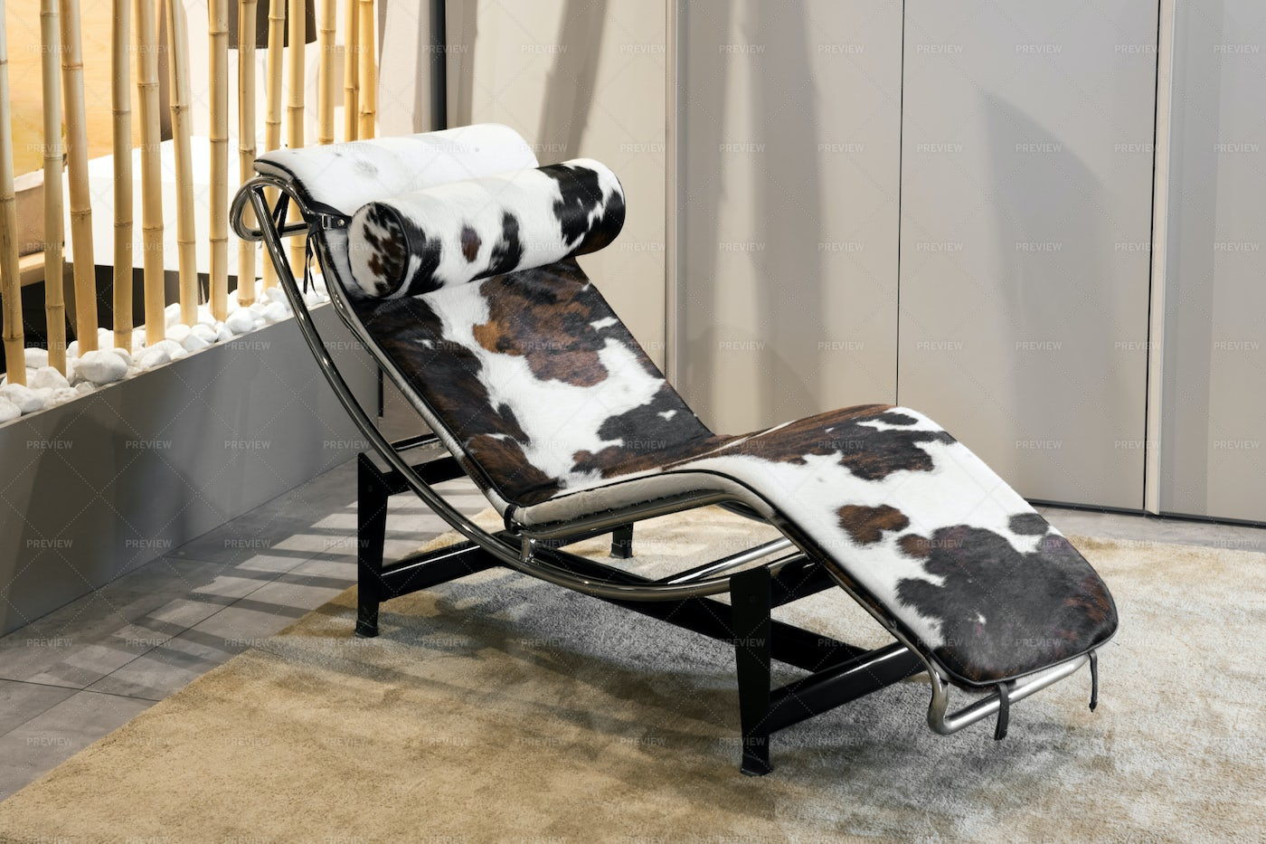 Animal Hide Chaise Lounge: Stock Photos