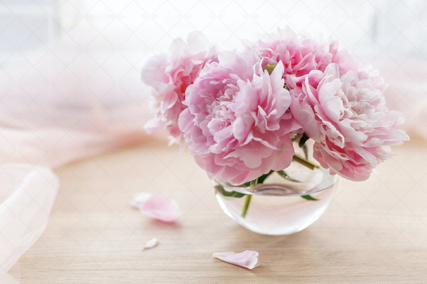 Pink Peonies In A Vase: Stock Photos