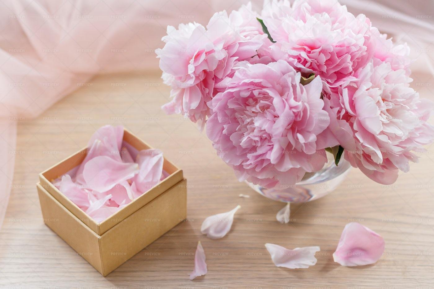 Peony Flowers And Petals: Stock Photos