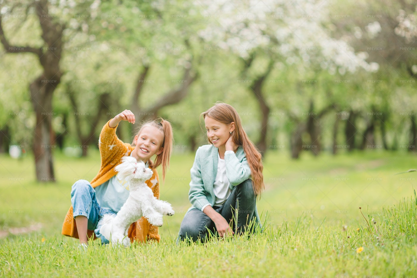 Playing With Their Puppy: Stock Photos