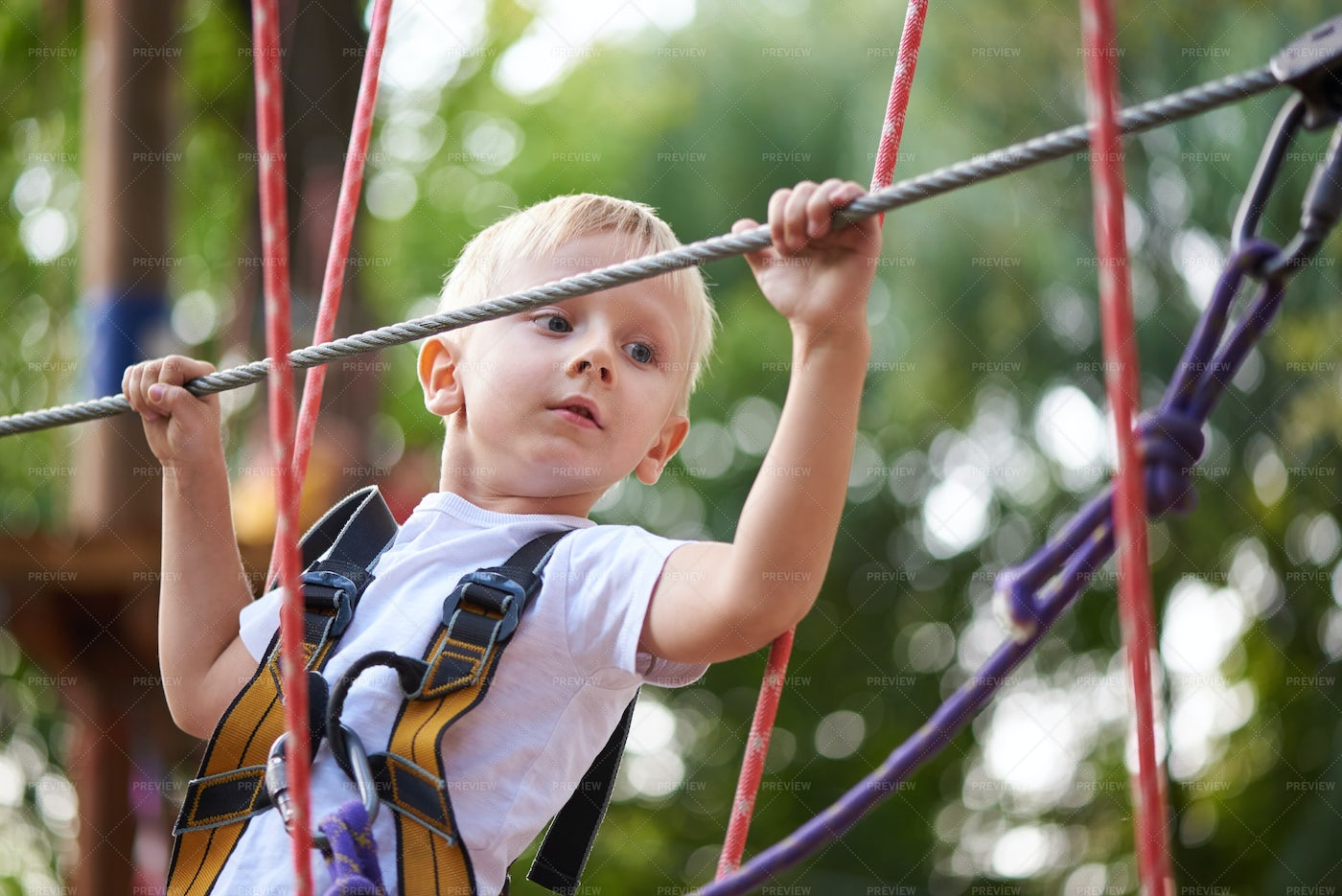 Boy In Rope Park: Stock Photos