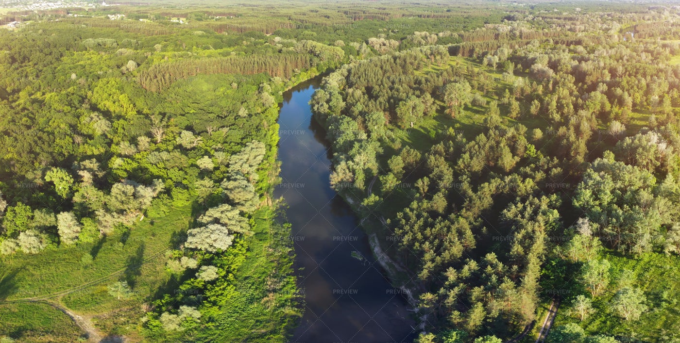River Bend In Forest: Stock Photos
