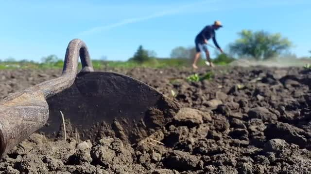 Cultivating Soil: Stock Video