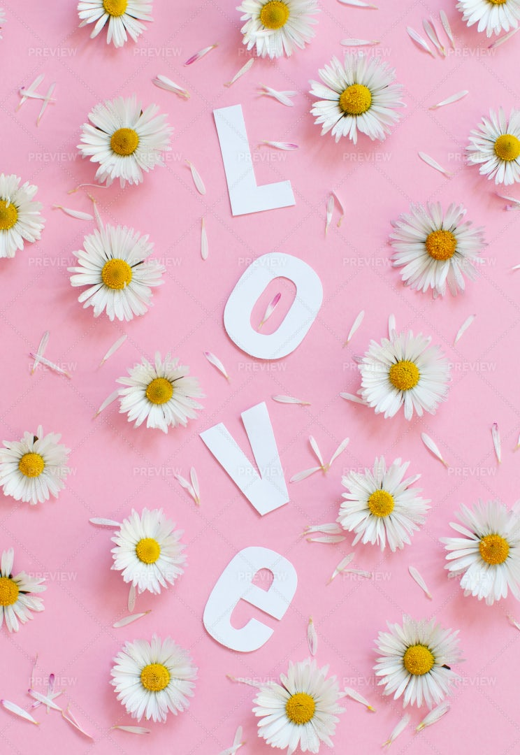 Daisies And Love Text: Stock Photos