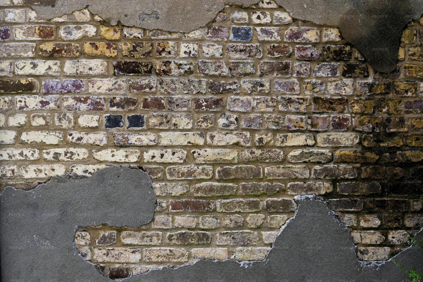 Brick Wall With Mold: Stock Photos