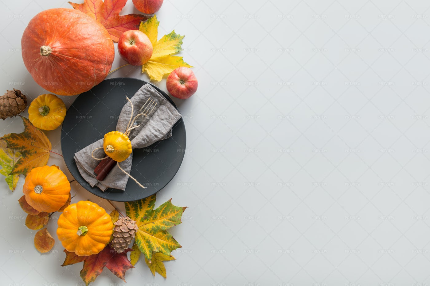 Thanksgiving Decoration: Stock Photos