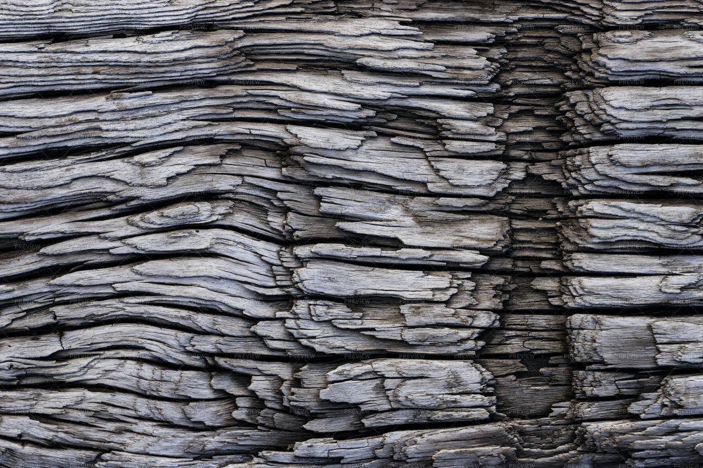 Heavily Textured Wood: Stock Photos