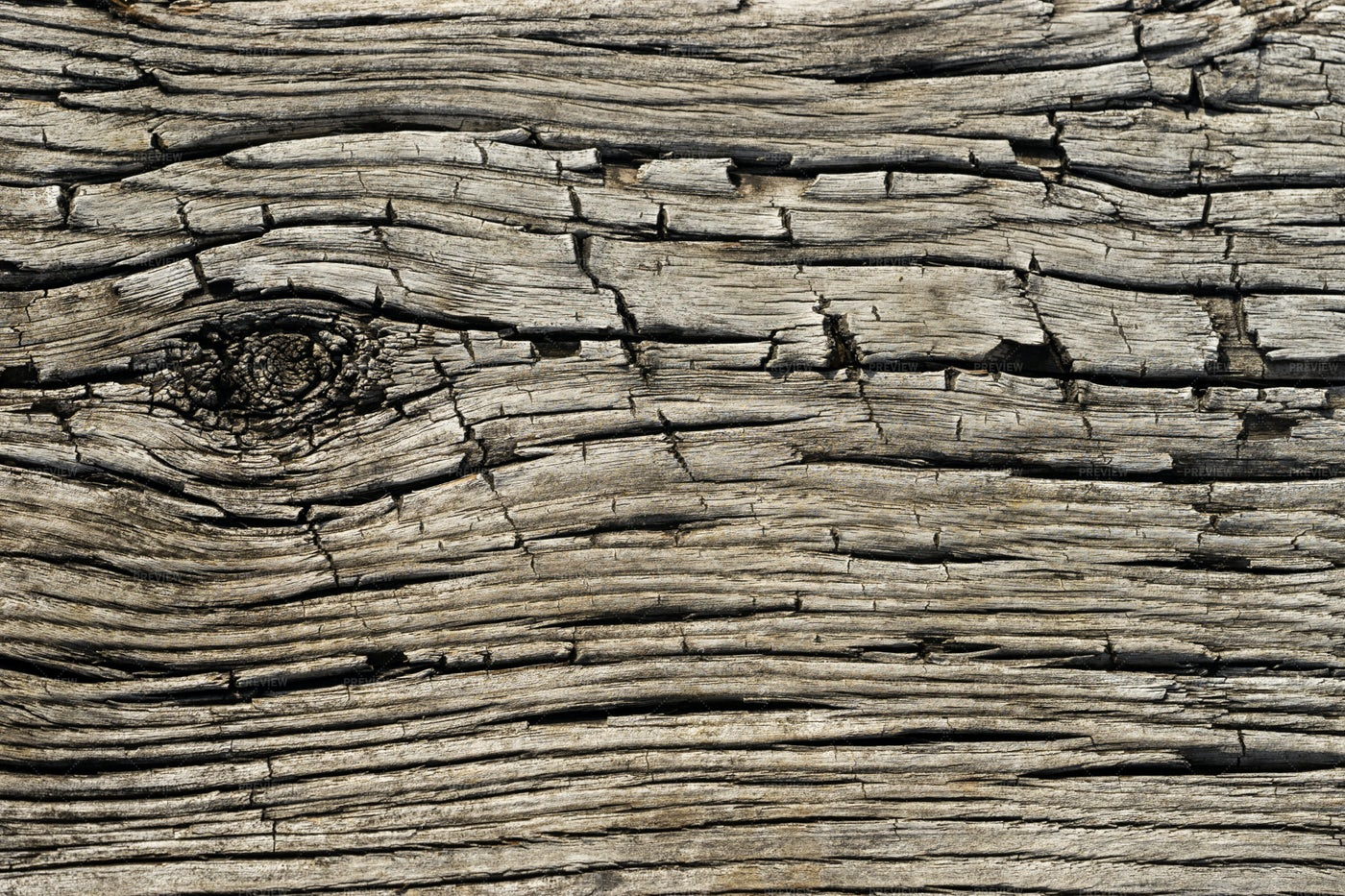 Snagged Wood: Stock Photos