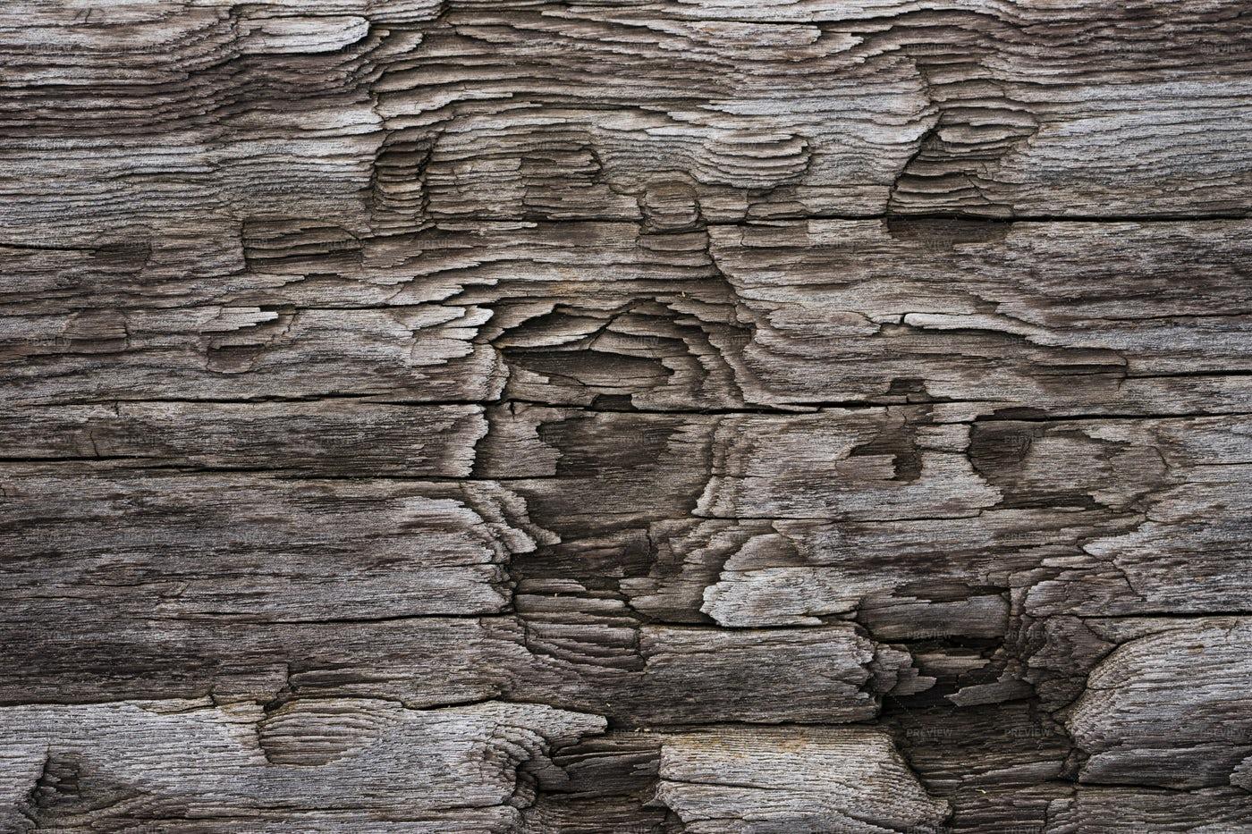 Closeup Of Textured Wood: Stock Photos