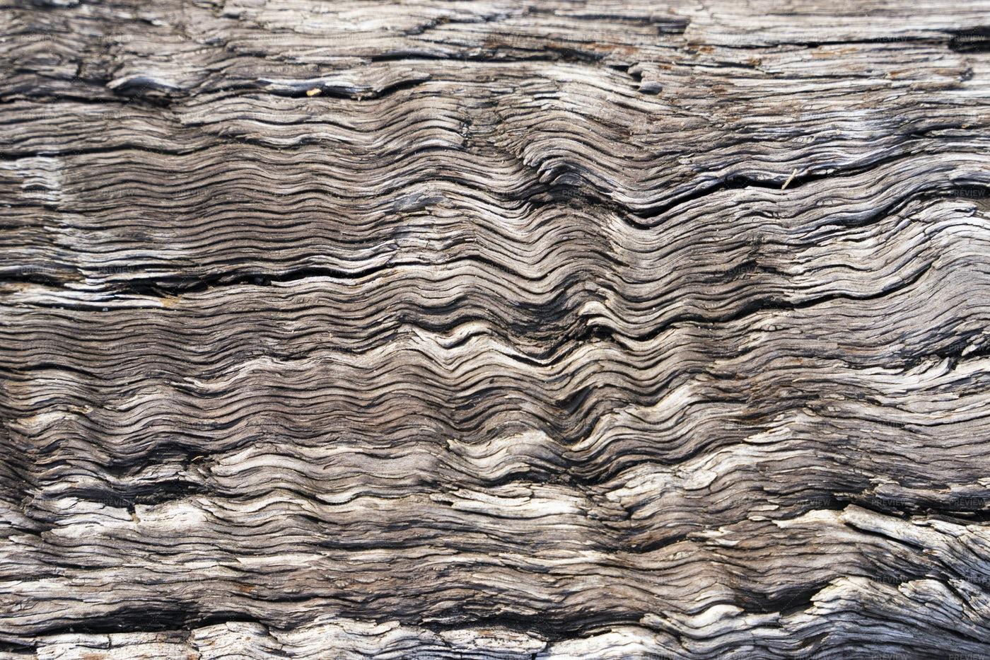 Detailed Wooden Textures: Stock Photos