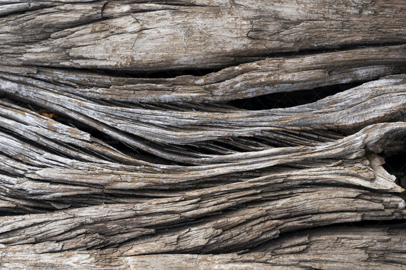 Deep Cracks In Wood: Stock Photos