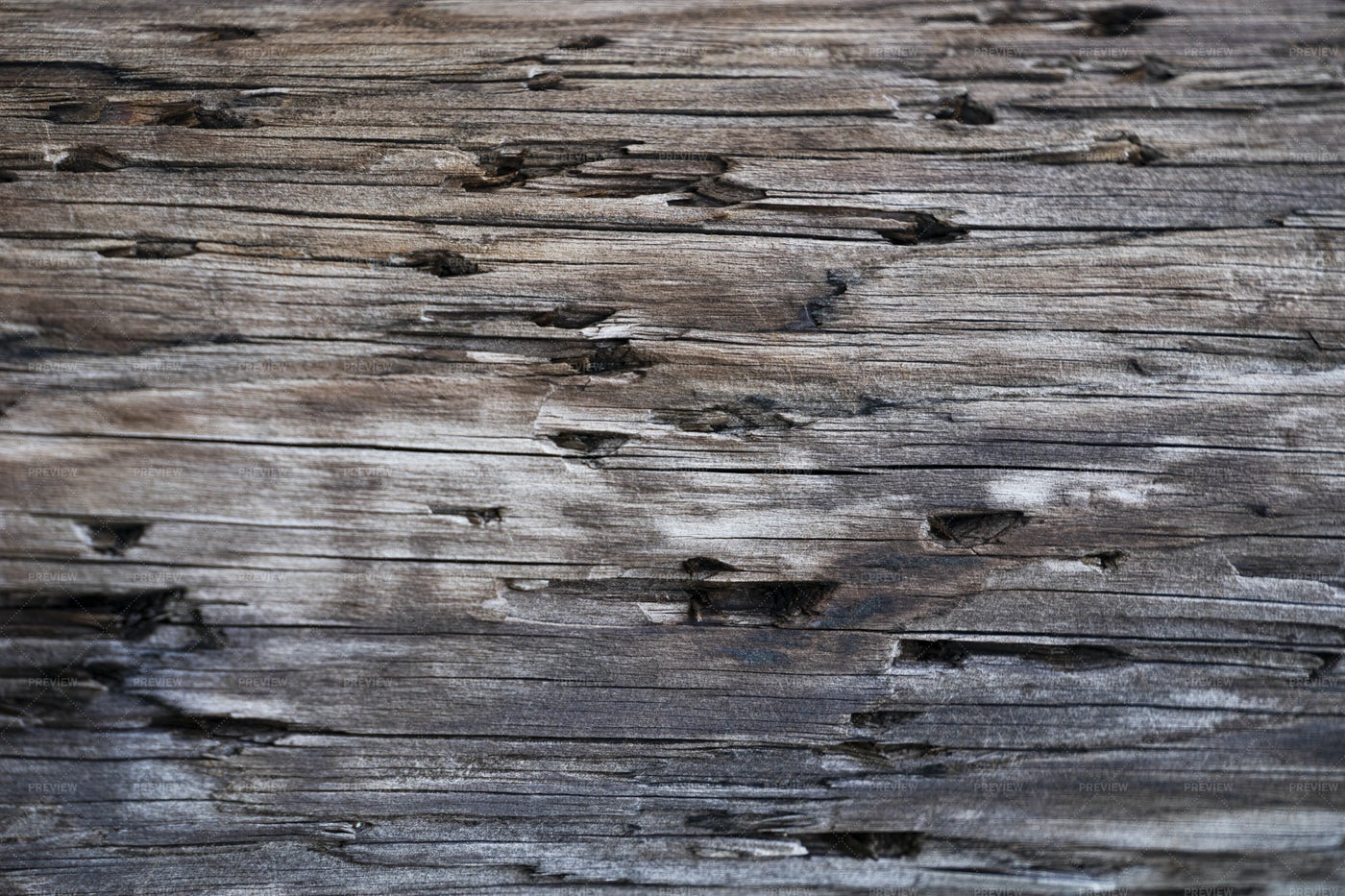 Old Wood With Holes: Stock Photos