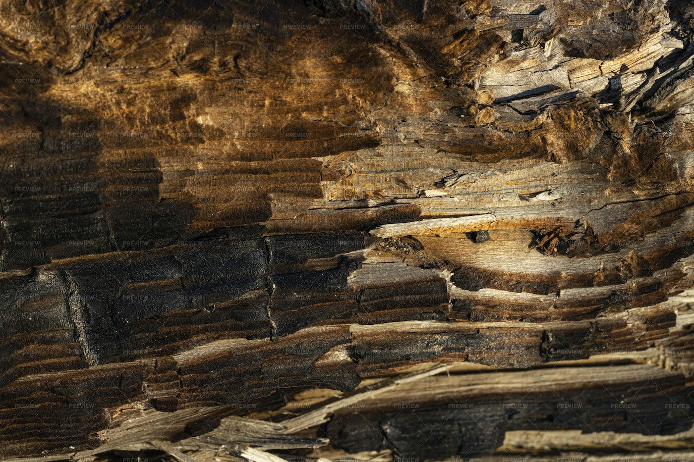 Old Charred Wood: Stock Photos