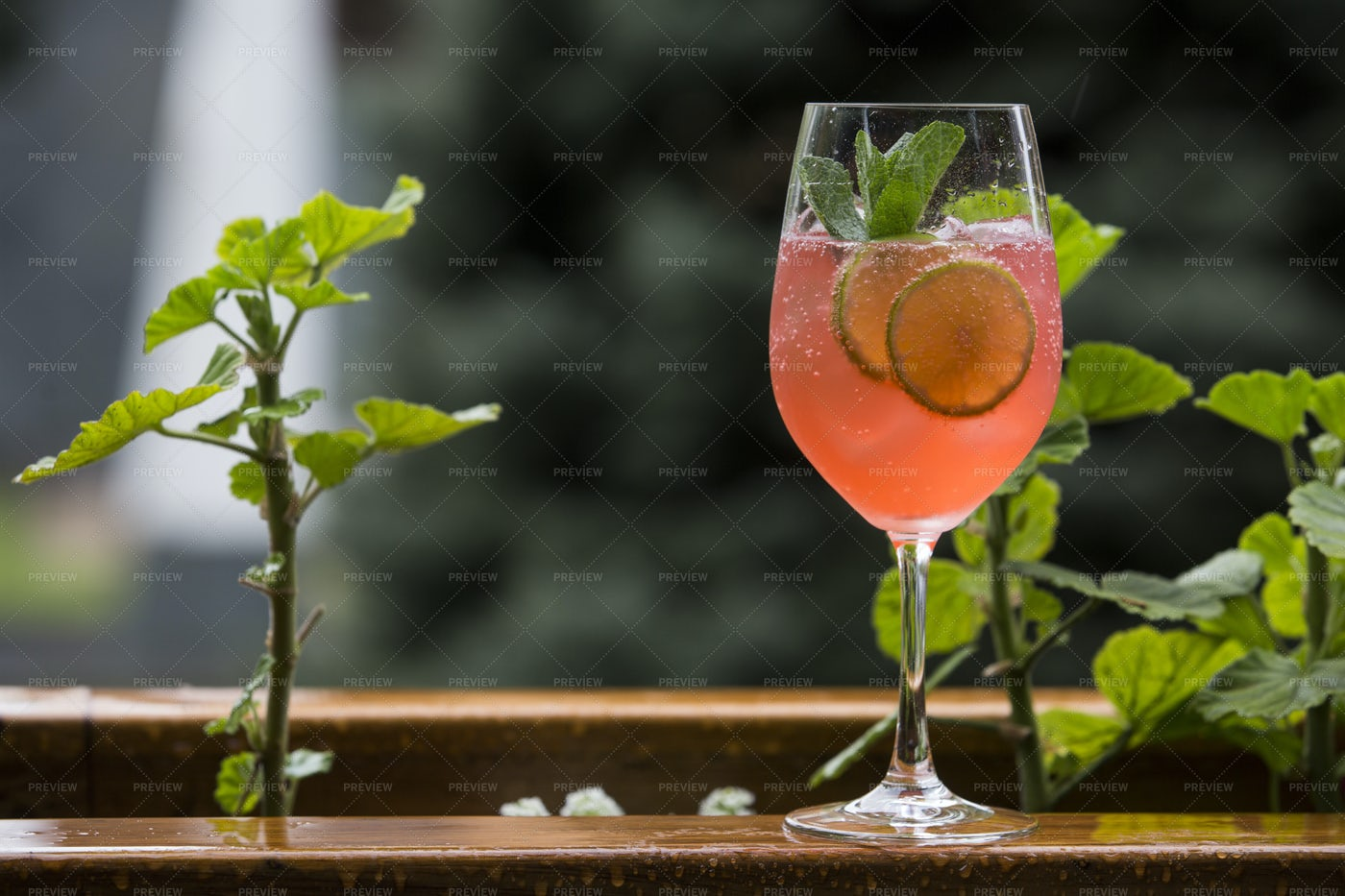 Alcoholic Cocktail With Beer: Stock Photos