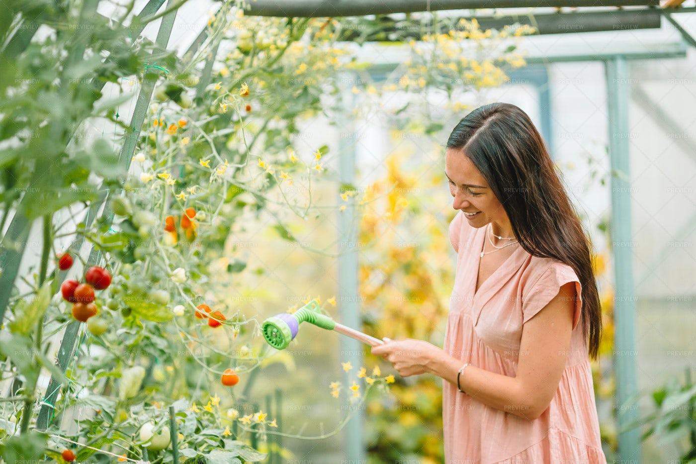 Watering Garden: Stock Photos