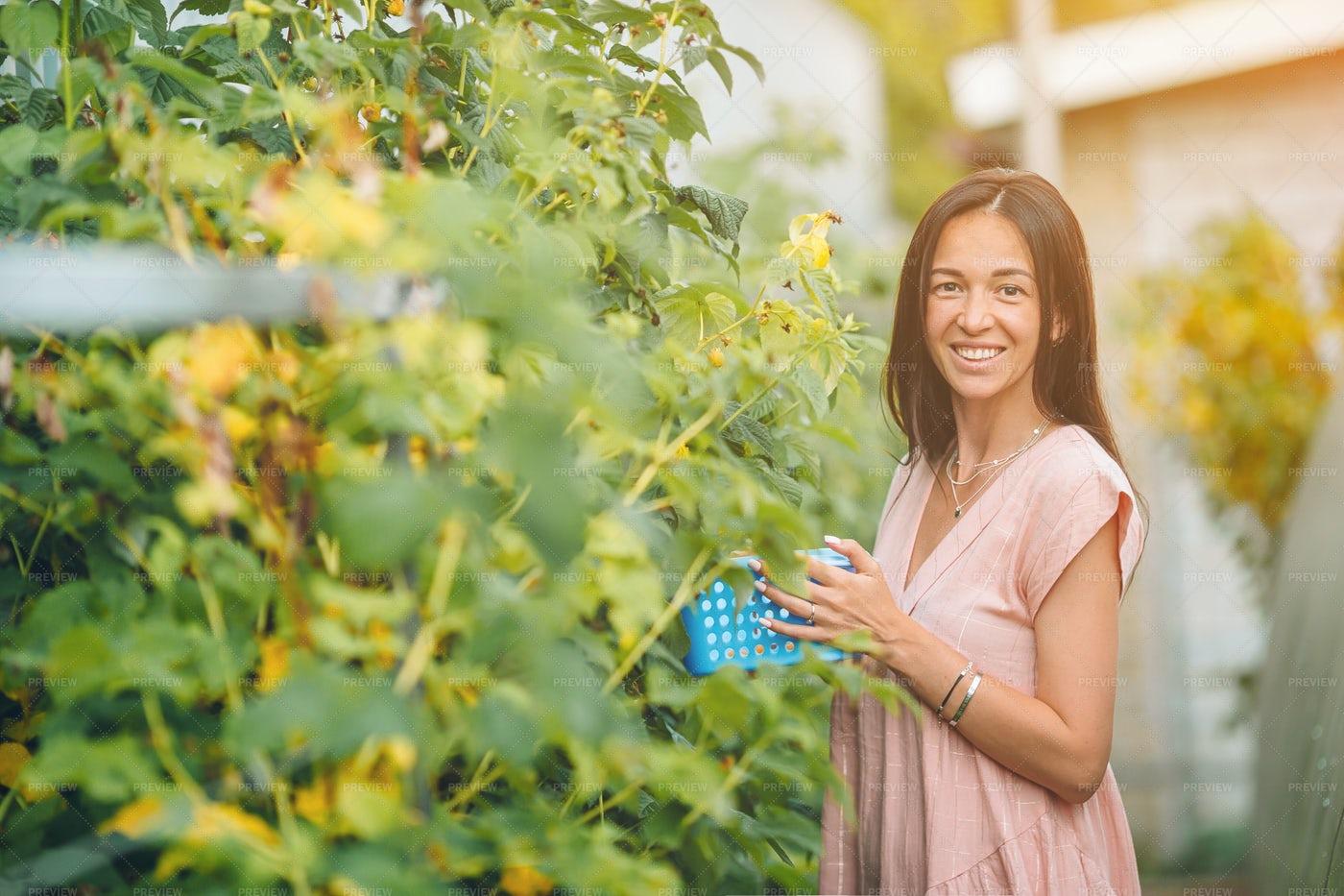 Woman In Garden: Stock Photos